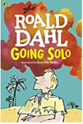 Going Solo Roald Dahl detail