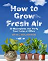 How To Grow Fresh Air 50 Houseplants That Purify Your Home Or Office Wolverton Bc  detail