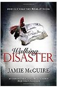 Walking Disaster Beautiful  Jamie Mcguire detail